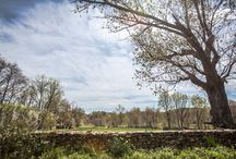 Landscapes / Landscape and real estate photography in Virginia. www.camdensphotography.com