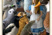 Alice in W: Tarot 1 / Alice in wonderland/Tarot cards
