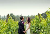 Llanerch Vineyard / Wedding photography at Llanerch Vineyard Vale of Glamorgan . Marquee reception.