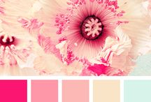 desing of color
