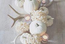 { Thanksgiving } / by Lauren Landry