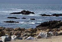 Visit Beautiful Monterey, CA