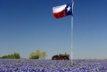 Lonestar State / All about the great state of Texas. / by Mollie Walker
