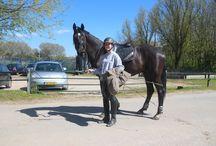Paardrijden / Paardrijden met een amazone Daimi genaamd