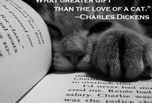 ...+books