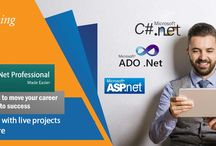 Best Dot Net Training in Noida