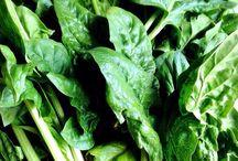 野菜 / 野菜類