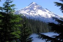 Oregon Virtual Tour / by David Brown