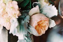 flowers / by Aimee Blom