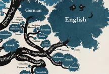Translation / translation studies