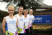 PDSA London Marathon Runners  / by PDSA