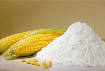 Corn Starch / Manufacturers of Corn/Maize Starches like Native maize starch, Thin boiling starch, Carboxymethyl starch, White dextrin, Borated yellow dextrin.