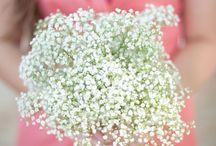ooooh, pretty wedding ideas / by Lori Paladino