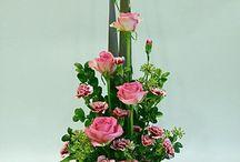 Fleurs - Dégradé