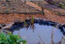 Wildlife ponds