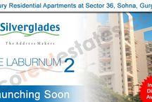 Silverglades Builder / Laburnum 2 offers optimally designed 2/3 BHK Vaastu Complaint Luxury Apartments.