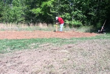 Great Garden Patch / Pictures of our first garden. A perspective  / by PJsLife