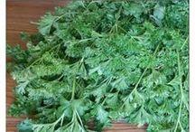 tørre krydderier urter