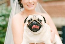My Best Friends Getting Married!!!! / by Stacy Suhay