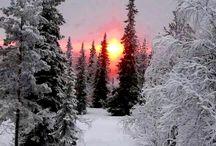 Winter | Insperation