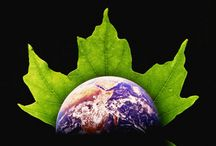 Nature: ELEMENTS / Earth, Water, Air, Fire, & Aether (Mother Nature)