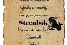 Steenbok - december