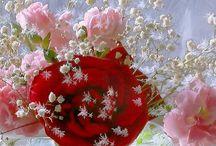 Blommor från appar