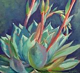 Succulents and Blooms / My paintings of succulents and blooms.  www.athenamantle.com  / by Athena Mantle