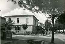 Since 1921 Hotel in Cattolica / by Hotel Alda Amelia Cattolica