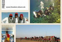 2017: 10 Jahre Freedom Divers Safaga / Eine kleine Geschichte in Bildern der vergangenen zehn Jahre