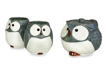 owl owl owl / by Ayesha Al-Akhdar