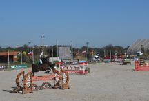 Pine Cliffs Grand Prix Cup 2015 / The Grand Prix Cup is the competed in the last week of the International Show Jumping event in Algarve, The Atlantic Tour in Vilamoura.