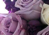 Вдохновение violet+