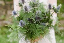 Lavender + Forest Green