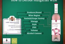 Infographics (Winefographics) / Infographics about Hungarian wine