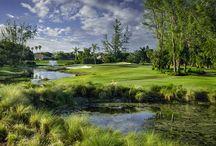 The Legendary Palmer Golf Course