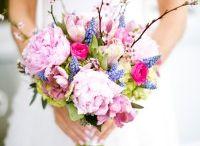 Spring wed