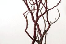 dry branches decor