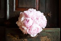 Pinks Ideas for Brides