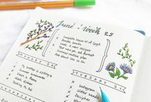 Bullet Journals and Planners