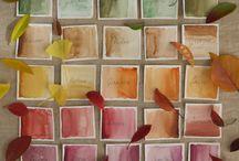 I colori dell'autunno / Le tavole autunnali si riempiono dei colori delle foglie: arancioni, rossi, marroni e viola!