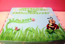 Spring Festival Cake/ Frühlingsfest Torten