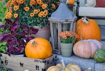 Halloween & More! / The fall season in Vermont not only brings a spectacular slideshow of colors, but many great ideas for decorating, enjoying the holidays and more!  Here's some ideas.