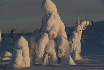Lappföld/Lapland / Lappföld csodálatos arcai