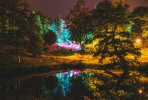 Wilderness Festival Highlights / Some of our favourites from the 2014 festival