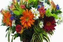 Cosas que deseo que me regalen / Rosas y flores