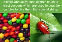 Fun facts