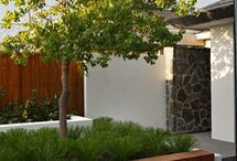 Landscaping & Outdoor Areas