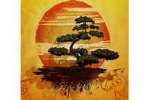 Бонсай * 盆栽 * bonsai