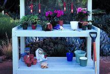 In the Garden / by Marylynn Wanielista